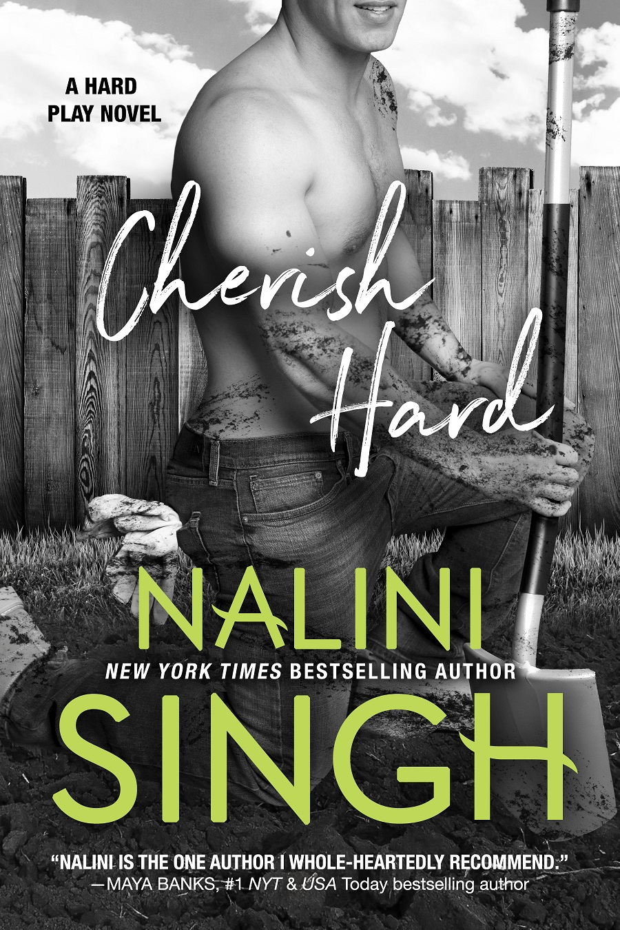 SPOTLIGHT: 'Cherish Hard' by Nalini Singh